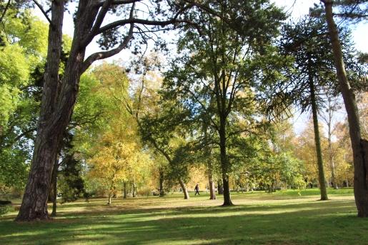 Autumn Botanic Garden