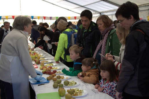 People apple tasting