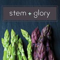 Stem and Glory logo pic