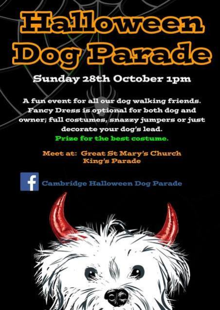 Cambridge Halloween Dog Parade
