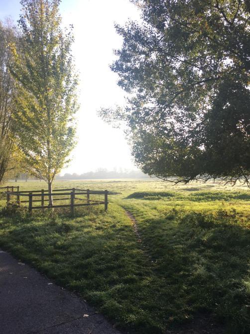 Autumn morning on Midsummer Common Cambridge