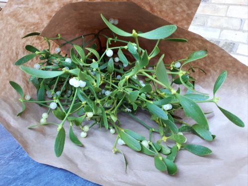 Mistletoe from Cambridge Market