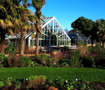Cambridge University Botanic Garden