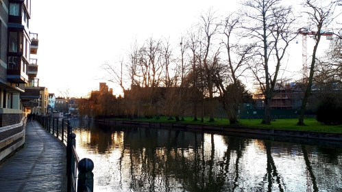 Late afternoon on the River Cam