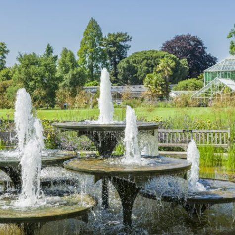 Cambridge Botanic Garden Fountains